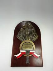 Medal Gmina Udanin