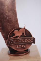 KULTURA TOP FOR DOG
